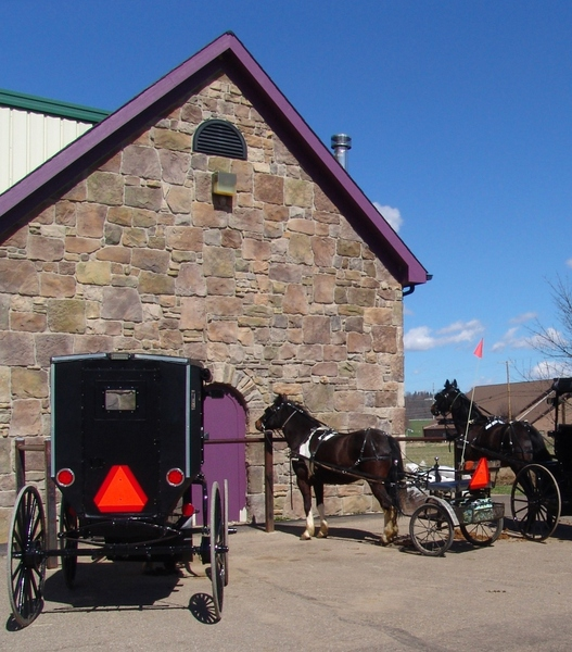 Amish Horses and Buggies: Photo taken in the Ohio Valley Amish Countryside of Amish horses and buggies.  A sight you rarely view outside of the Amish world. Shopping day.