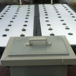 hydroponics tables: hydroponics tables in a green house
