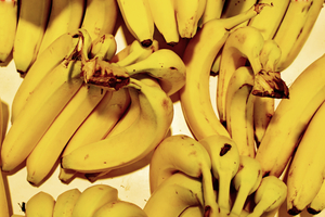 Bananas, ripe fruit and yellow: yellow bananas, fully ripe are in supermarket in the fruit section and ready to be sold