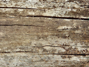cracked wood textures3