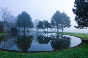 fog and lake reflections 2