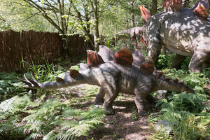 Stegosaurus dinosaur: A lifesize model Stegosaurus dinosaur in a wildlife park in England. Photography in this area was freely permitted.