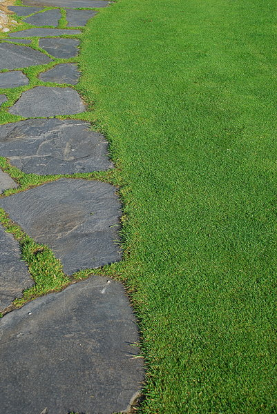 Flagstone walkway: Path texture