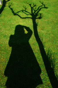 Lady photographer shadow: Lady photographer shadow