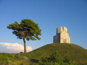 tree and church: one of the symbols of the historic town Nin, Croatia. The church St Nicholas 12th c.