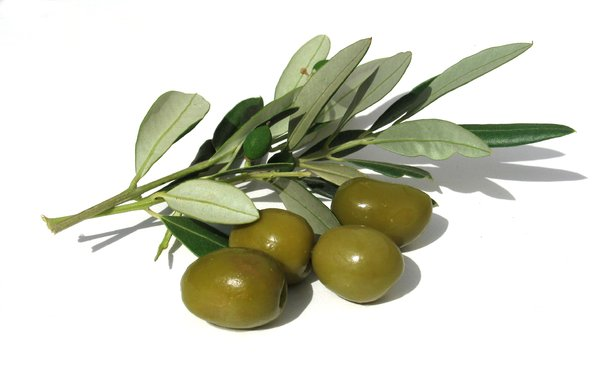 olives 2: none