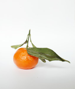 Mandarin: A teastfull mandarin ...  enjoy it!