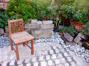 Mini Garden: Mini garden with solitary chair