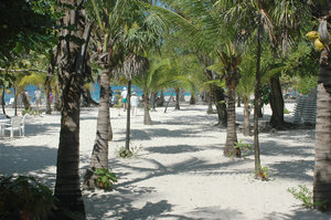 Roatan beach: Beach of West End, Roatan, Honduras