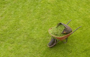 Wheelbarrow and grass
