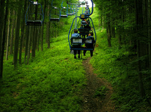Cable Railway in deep pine for