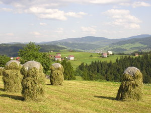 Haystacks: haystacks in the mountain scenery. Photo taken near Jaworzynka/Trzycatek, where the borders of Poland, Czech Republic and Slovakia meet.Please comment this shot or mail me if you found it useful. Just to let me know!I would be extremely happy to see the f