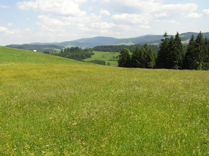 Mountain valley meadow: A meadow in the valley in Polish mountains. Huge hills and beautiful landscape near Wisla.Please comment this shot or mail me if you found it useful. Just to let me know!I would be extremely happy to see the final work even if you think it is nothing spec