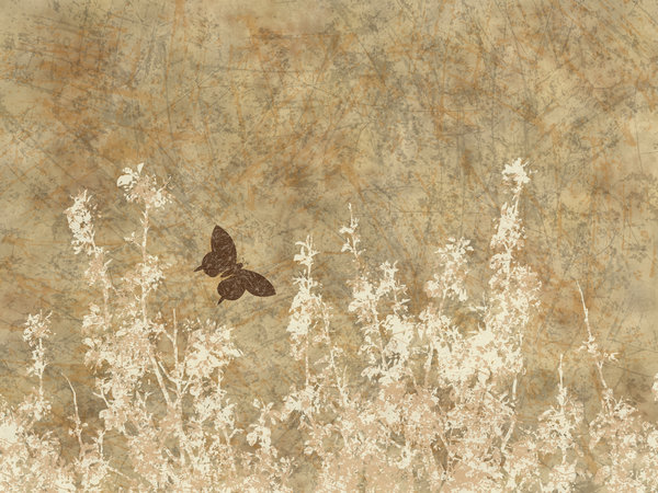 Nature Grunge: A grungy meadow with butterfly textured background.  Lots of copyspace.