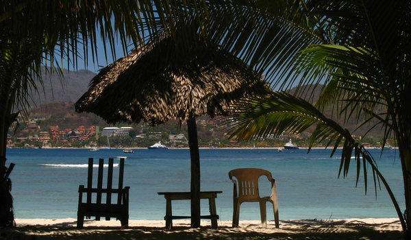 Chairs at beach shore: A chair at the beach shore, with palms surrounding.