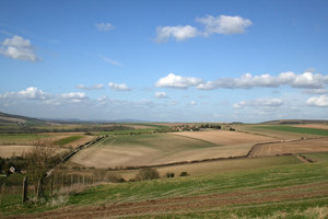 South Downs 1