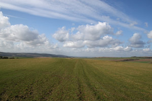 South Downs 3