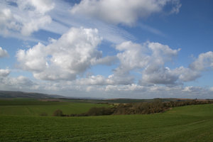 South Downs 6: The landscape of the South Downs, West Sussex, England, in spring.