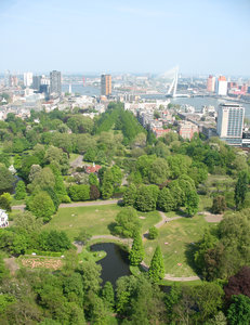 A view on the city of Rotterda
