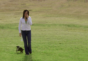 Woman and Puppy: A woman walking through a park with a boxer puppy.