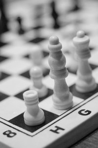 White chess army 1: White pawns and pieces on the  chequer