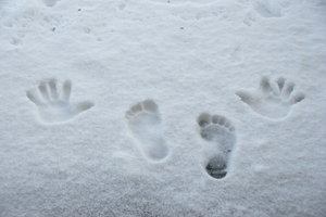 Footsteps and hand-marks on th: Prints on the white