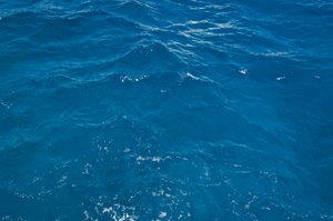 The Sea, Up Close and Personal