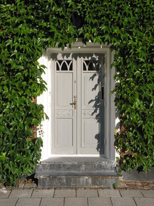 residential door: Door surrounded by climbing plant. Captured in Lund, Sweden.