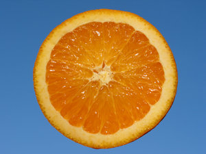 Orange and Blue 2: Natural high contrast - crisp and fresh orange with blue sky background. Put the orange on a metal stick and held it up against the evening sky slightly tilted towards the sunlight.