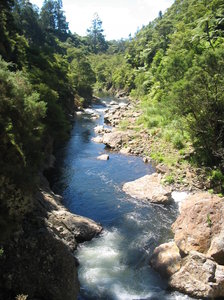 Karangahake River: The Karangahake Gorge in New Zealand.