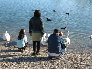 feeding the ducks: none