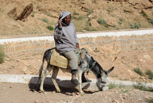 Farmer on donkey
