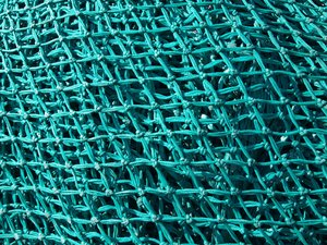 Texture - net and trawl