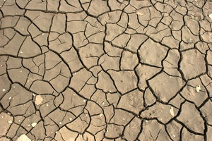 Dry Ground: Close-up of dry mud/earth