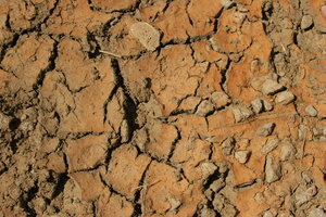 Dry Ground 2: Close-up of dry, cracked earth