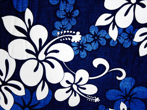 Hibiscus fabric: fabric of car seat cover, has had the blue increased as was a bit grey.  I have used this too with a gradient map adjustment layer etc to change to pink, and it turned out well...I got bored one day sitting in my mother's car waiting for her.... and this
