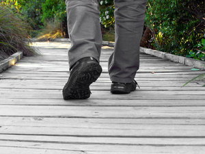 Walk the path: walking on boardwalk