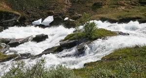Rushing stream: A fast-flowing stream in spring in Norway.