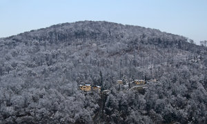 Winter hillside: Homes on a hillside near Salzburg in December snow.
