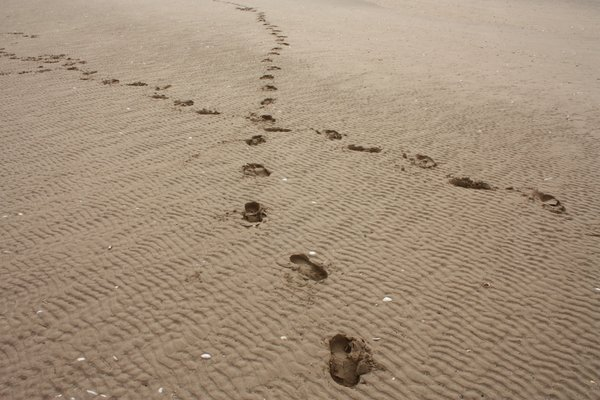 Footsteps: Footprints in the sand...