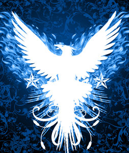 phoenix dark 2: Phoenix in dark blue background