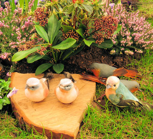 birds and plants still life