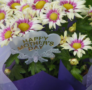Happy Mother's Day - say it wi: mothers day flowers