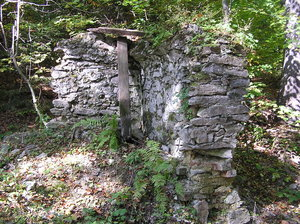 Ruin: A ruined house wall in the forest.