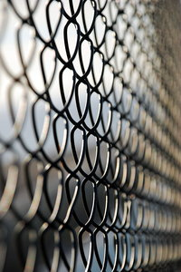 Security fence 3