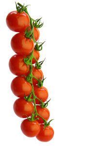 Cherry tomato 2: Cherry tomatoes isolated on white background.