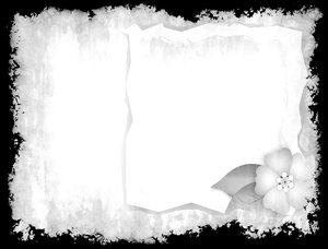 Grunge Paper: A little addition to a grunge background. Floral insert and frame.