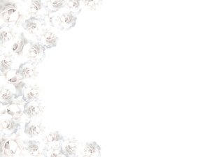 White Rose Border 1: Borders made with white roses. Please use these images only within RGBs image licence. There are restrictions on use of all images on this site.