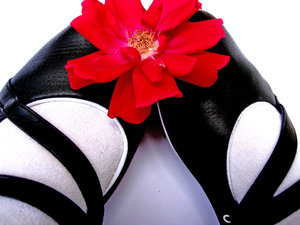 Flower & shoes: No description