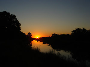 Sunset in Texas: I used my grand child's miniture Sony Cybershot camera and grabbed this great sunset over the bayou.